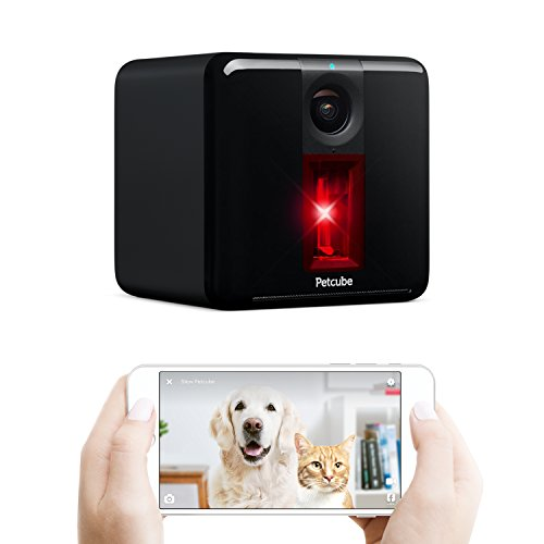 Petcube Play Smart Pet Camera. Remote Dog/Cat Monitoring with HD 1080p Video, Two-Way Audio, Night Vision, Sound/Motion Alerts, Built-in Light Dot. App-Enabled Pet Safety and Home Security
