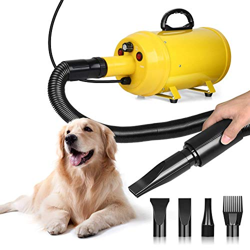Amzdeal Dog Dryer Pet Hair Dryer 2800W Stepless Speed Dog Blaster Dryer Professional Dog Grooming Dryer Pet Hair Blower for Dogs Cats, with Extension Hose, Heat System, 4 Nozzles