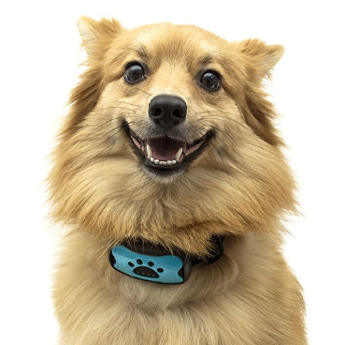 TopDog Dog Bark Collar, Anti Bark Collar, NO SHOCK, Advanced 2in1, Harmless and Humane, Training and Anti Bark Collar, 7 Adjustable Levels, 2 colour face