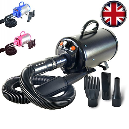 Gravitis 2800W Stepless Speed Dog Cat Pet Grooming Hair Dryer Hairdryer Blaster Blower (Black)
