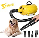Amzdeal 2800W Dog Dryer, 4 Nozzles Stepless Speed Pet Grooming Dryer, Cat Hairdryer, Professional Heater Blaster Blower