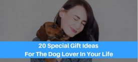 20 Top Gift Ideas For Dog Lovers in 2019: Unique Gifts For Dogs & Their Owners