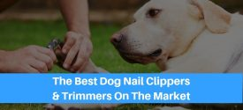 The 10 Best Dog Nail Clippers & Trimmers For 2019